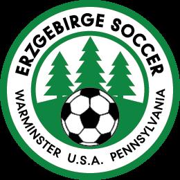 VE_Soccer_Logo